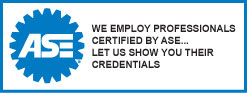 ASE Certified Employees
